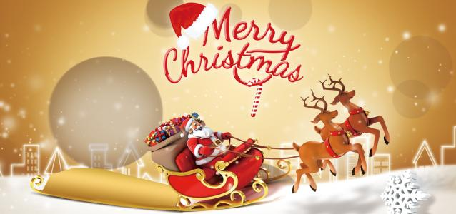 WZH Wish You Merry Christmas and Happy New Year!